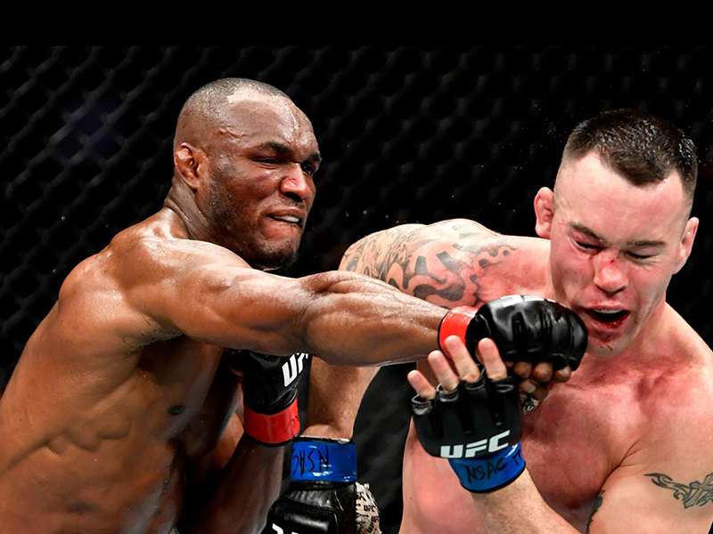 Campeão, Usman nocauteia Covington e Volkanovski supera Max Holloway no UFC 245